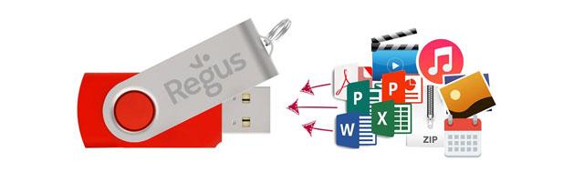 Flash Drive Insertion de données